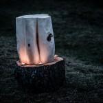 Sculpture sur bois et poésie - Luc Pelletier