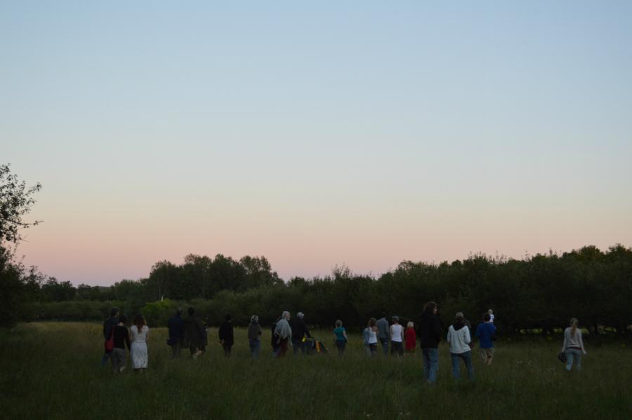 Public - Parcours artistique - prairie